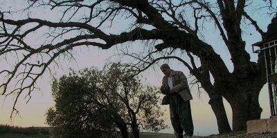 Mamosta unter Baum sucht Steine